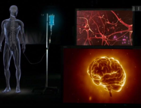 """Das Geheimnis des Placebo-Effektes  –  Sendung SRF """"Einstein"""" in Zusammenarbeit mit brainability"""